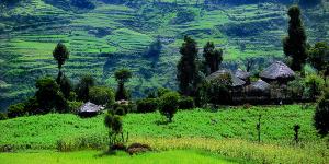Salvatore Renis, Etiopia